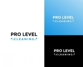 PRO LEVEL CLEANING.jpg