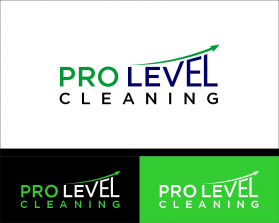 Pro Level Cleaning 2.png