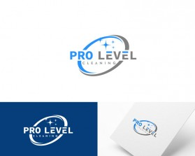 Pro-Level-Cleaning-12.jpg
