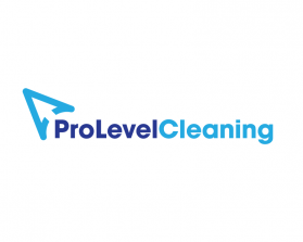ProLevelCleaning.png