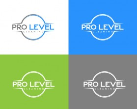 Pro-Level-Cleaning-10.jpg