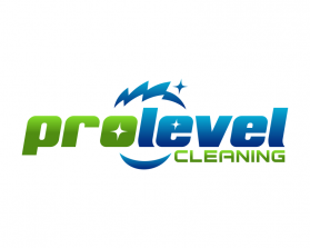 PRO LEVEL CLEANING.png