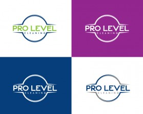 Pro-Level-Cleaning-11.jpg