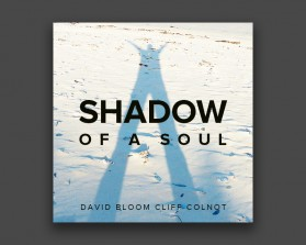 Shadow-of-a-Soul-6.jpg