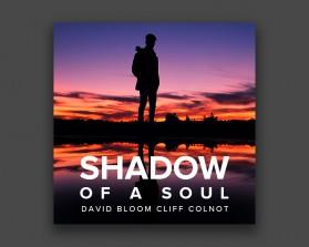 Shadow-of-a-Soul-2.jpg