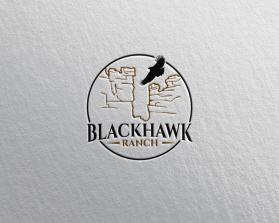 Hawk3.png