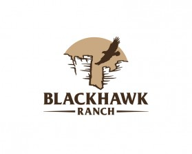 BLACKHAWK2.jpg