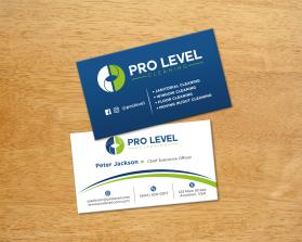 Pro Level bcard fmr-15.png